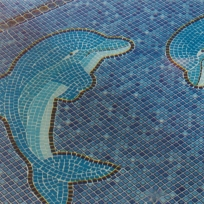 Mozaic design of dolphins in swimming pool.